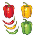 set with vegetables peppers isolated on white vector image