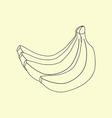 Banana Fruit Icon vector image vector image