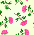 Seamless texture pink rose stem with leaves vector image vector image