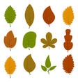 set of twelve different autumn leaves vector image vector image