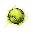 tennis ball from a splash of watercolor hand vector image vector image