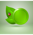 Two green leaves with ladybird vector image vector image