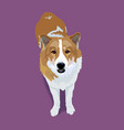 adorable cutethai bangkeaw dog with shadow on vector image vector image