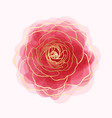 beautiful rose watercolor imitation hand-painted vector image vector image