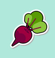 beet sticker on blue background colorful vegetable vector image vector image