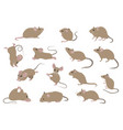 different mice mouse yoga poses and exercises vector image vector image