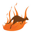 fire in woods on white background vector image vector image