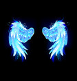 glowing folded wings vector image vector image