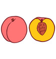 isolated flat peach vector image