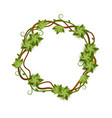 round and circle frame vines and leaves with vector image vector image