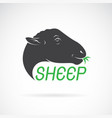 sheep head design on white background wild vector image vector image