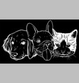 silhouette cat and dog characters best friend vector image vector image