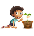 Boy planting seed in the pot vector image vector image