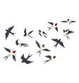 flying birds flock cartoon hand drawn swallows in vector image vector image