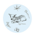 hand drawn of fawn deer with autumn fruits and pla vector image vector image