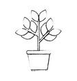 plant in a pot icon