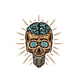 skull shaped lamp with brain vector image vector image