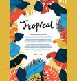 tropical vivid leaf frame design summer tropical vector image vector image