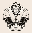 vintage concept angry handcuffed gorilla vector image vector image