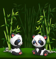 cartoon baby panda in the jungle bamboo vector image
