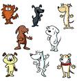 dogs cartoon vector image