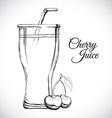 fruit juice design vector image