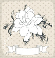 hand drawn a single flower eps 10 vector image vector image