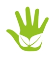 hand leafs plant icon vector image