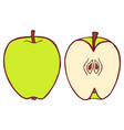 isolated flat apple vector image vector image