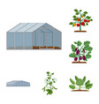 isolated object of greenhouse and plant sign vector image