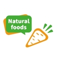 Natural foods vector image vector image