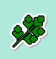 parsley sticker on blue background colorful vector image vector image