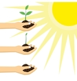 Person holding a young plant under the sun vector image vector image