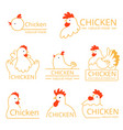 pollo logo design template identity pictures vector image