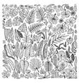 tropical plants floral doodle set outline vector image vector image