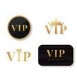 vip club logo exclusive vip person card vector image vector image