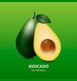 3d realistic half and whole avocado vector image vector image