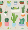 cactus and succulent flower green home plant vector image vector image