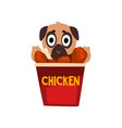 cute pug dog inside a basket of fried chicken vector image vector image