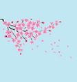 pink sakura tree flowers with flowing petals on vector image vector image