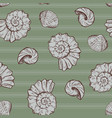 seashells and stripes vector image
