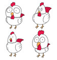 set of chicken vector image vector image