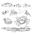 set of various sea creatures icons vector image