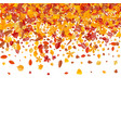 autumn pattern with bright tree leaves vector image