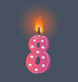 birthday burnitn candle on dark vector image vector image
