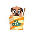 cute pug dog sitting in a paper cup with ice cream vector image vector image
