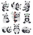 panda set hand drawn style vector image