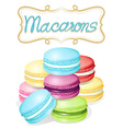 Poster of different flavours macarons vector image vector image