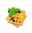 realistic detailed 3d belgian waffle and green vector image