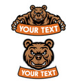 set cartoon bear mascot hold banner vector image